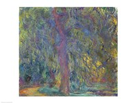 Weeping Willow, 1918-19 Fine-Art Print