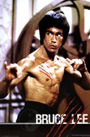 Bruce Lee Wall Poster