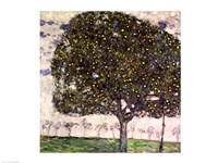 The Apple Tree II, 1916 Fine-Art Print