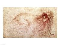 Sketch of a roaring lion Fine-Art Print