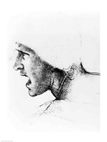 Study for the head of a soldier in 'The Battle of Anghiari' Fine-Art Print