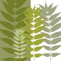 Garden Greens Fine-Art Print