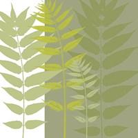 Field Greens Fine-Art Print
