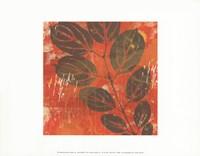 Exotic Vine Fine-Art Print