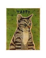 Tabby (grey) Fine-Art Print
