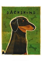Dachshund (black and tan) Fine-Art Print