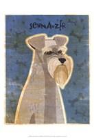 Schnauzer Fine-Art Print
