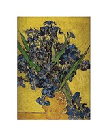 Irises in Vase Fine-Art Print