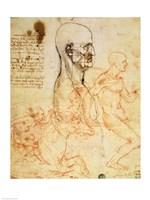 Torso of a Man in Profile, the Head Squared for Proportion Fine-Art Print