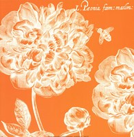 Summer Bees III Fine-Art Print