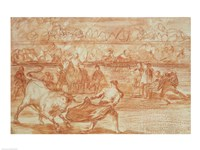Bullfighting Fine-Art Print