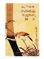 Bird and Bamboo Fine-Art Print