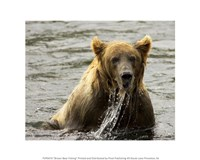 Brown Bear Fishing Fine-Art Print