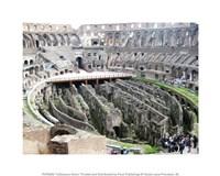 Coloseum Ruins Fine-Art Print