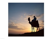Silhouette of a man on a camel, Giza, Egypt Fine-Art Print