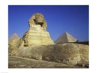 Sphinx, Giza, Egypt Fine-Art Print