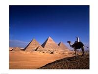 Riding a camel near pyramids, Giza Pyramids, Giza, Egypt Fine-Art Print