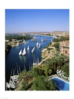 Sailboats In A River, Nile River, Aswan, Egypt Vertical Landscape Fine-Art Print