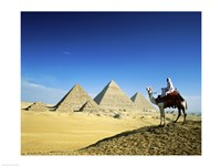 Man riding a camel near the pyramids, Giza, Egypt Fine-Art Print