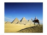Man riding a camel near the pyramids, Giza, Egypt Fine-Art Print