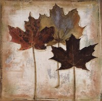 Natural Leaves III Fine-Art Print