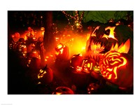 Jack o' lanterns lit up Roger Williams Park Zoo, RI Fine-Art Print