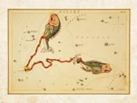 Pisces Zodiac Sign Fine-Art Print