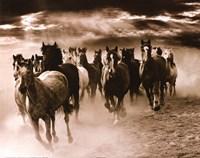 Running Horses Fine-Art Print