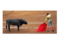 Bull and Matador Stand Off Fine-Art Print