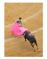 Matador Bullfight Fine-Art Print