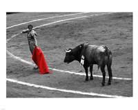 Red Matador I Fine-Art Print