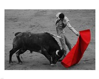 Red Matador II Fine-Art Print