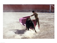 Matador fighting with a bull, Spain Fine-Art Print