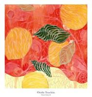 Citrus Limon II Fine-Art Print