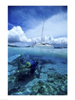 Scuba diver in the water with a sail boat in the background, British Virgin Islands Fine-Art Print