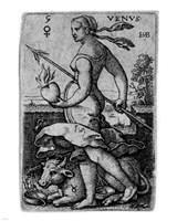 The Seven Planets - Taurus Fine-Art Print