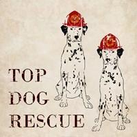 Top Dog Rescue Fine-Art Print