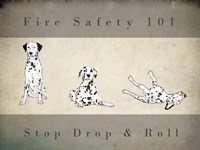 Stop, Drop and Roll Fine-Art Print