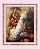 Peacocks, Column Fine-Art Print