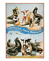 Forepaugh & Sells Brothers Fine-Art Print