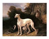Alfred Dedreux - A Greyhound In An Extensive Landscape Fine-Art Print