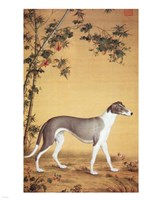 Greyhound by Bamboo Fine-Art Print