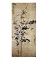 Wang Fu-Ink Bamboo Fine-Art Print