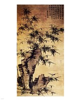 Xia Chang-Bamboo and Stone Fine-Art Print