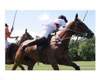 Polo nearside swing Fine-Art Print