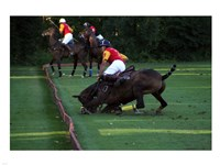 Polo - red and yellow Fine-Art Print