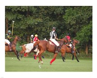 Polo Umpire Fine-Art Print