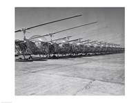 Helicopters in a row, Bell H-13D, Korean War Fine-Art Print