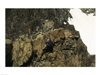 High angle view of a person mountain climbing, Ansel Adams Wilderness, California, USA Fine-Art Print