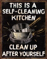 Self Cleaning Kitchen Fine-Art Print